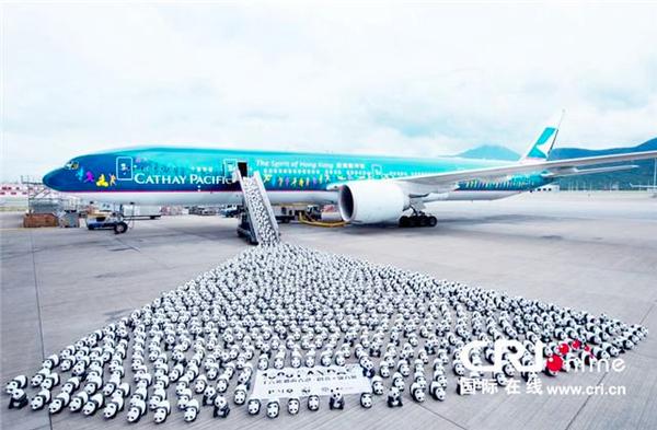 1600只纸熊猫乘坐飞机抵达香港;