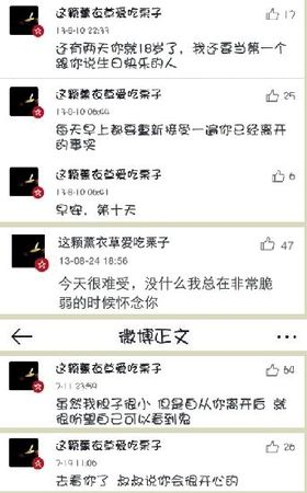 男孩去世一年多,洛阳女孩坚持为他@李嘉乐奋而知之微博留言1570条
