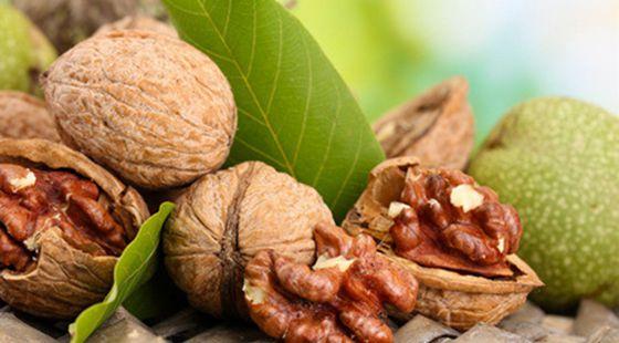 核桃还可用于治疗非胰岛素依赖型糖尿病;核桃对癌症