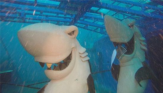 壁纸 动物 海底 海底世界 海洋馆 水族馆 鱼 鱼类 550_313