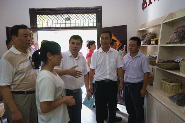 调研组察看枫岭村大学生村官帮村民创办的淘宝店