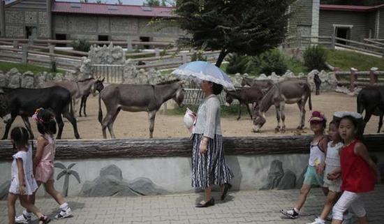 朝鲜平壤动物园里啥模样?