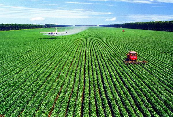 农业部:农业绿色发展五大行动启动