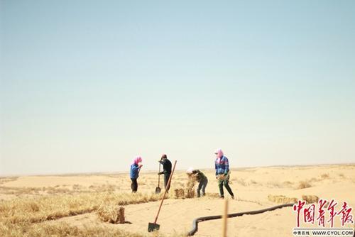 男子沙漠种树14年:希望将环保的种子种进更多人心里