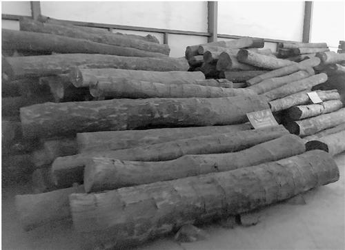 东阳横店木材市场,连排的木材场仓库中,经销非洲血檀木的商家并不太多