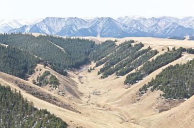 调查核实,甘肃祁连山国家级自然保护区生态环境破坏问题突出.主
