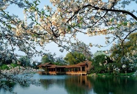 杭州最漂亮的风景图片