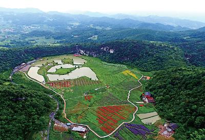政府积极筹划落实乡村振兴战略 提高农村电子商务发展水平