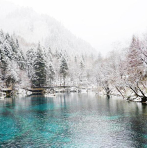 九寨沟迎来入冬第一场雪 晶莹剔透美如仙境