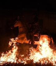 """西班牙庆祝圣安东尼节 民众""""骑马跳火"""""""