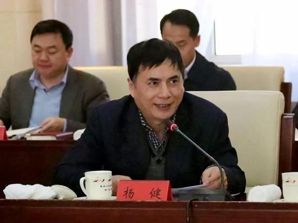 台盟中央副主席 杨健
