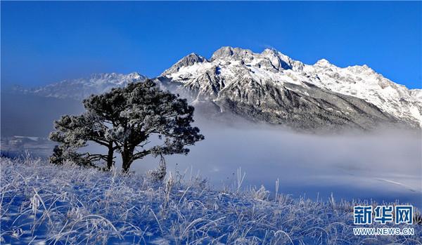 玉龙雪山美景。