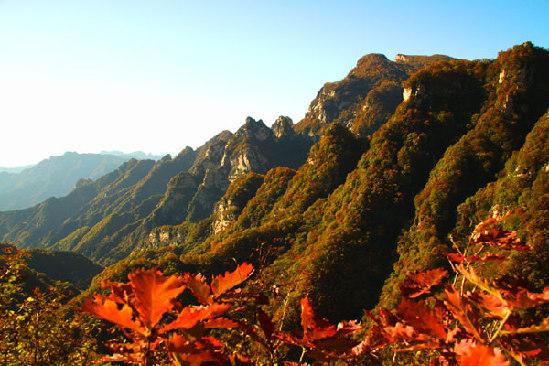 灵寿五岳寨风景区红叶