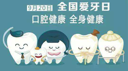 口腔内部结构图片