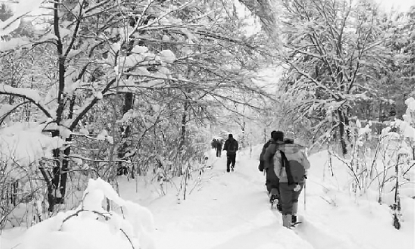 """怎样预防和减轻冬季""""情绪伤风""""?"""