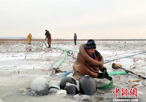 图为挖藕人正在安装高压水枪。 韩冰 摄