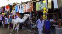 埃及阿斯旺的旅游市场