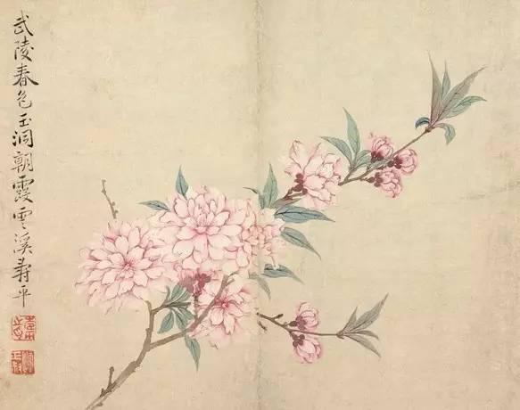 诗人陶渊明说平畴交远风,良苗亦怀新,不惟深谙农耕之道,亦将诗人冲淡自如的心境转化为贴切温暖的私语,春意盎然,莫过于此。 画家中亦有这样的好手。仅就花卉而言之,恽寿平自然为其中魁首。恽寿平诗、书、画俱佳,号为三绝。其花卉写生中,有许多春季当令品种,可供读者于春深之际,卧游品味。 惟能极似,才能传神 恽寿平(1633-1690),原名格,字寿平,后以字行,改字正叔,号南田。其为文人世家,故恪守礼仪之道,忠孝自持。少时从父抗清,战火纷飞中父子失散,兄长殉国,后被清人俘虏,沦为奴隶。幸亏天生好面目,堪称丰神