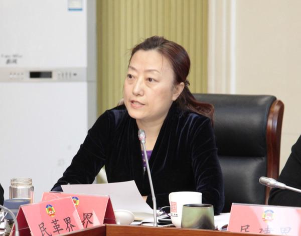 民盟东城区委常务副主委李辉在会上发言
