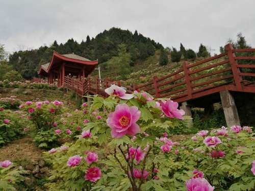 http://www.cqsybj.com/chongqingxinwen/106746.html