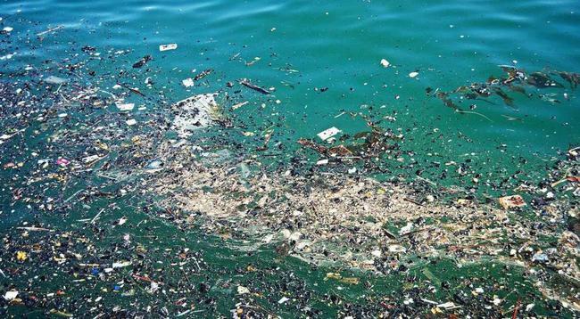 防治微塑料污染需全社会参与
