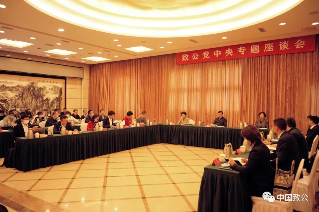 """致公党召开""""发展数字经济,推进数字产业化和产业数字化""""座谈会"""