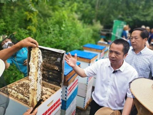 养蜂有了新技术(467097)-20210729090436