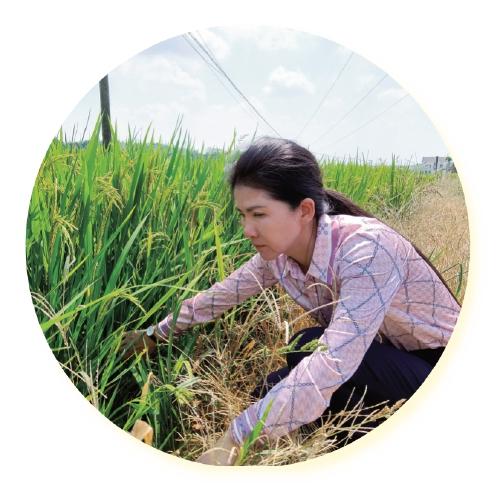 董敏芳:让农民种田更轻松