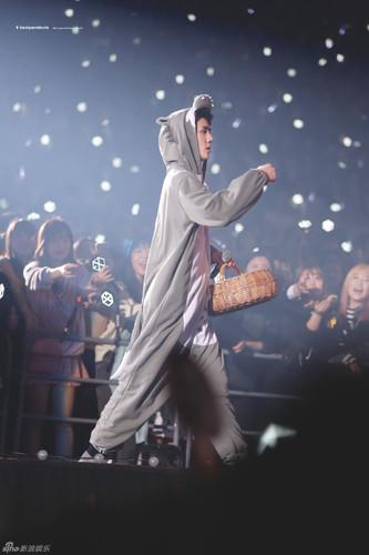 exo演唱会变动物城 穿睡衣裸胸